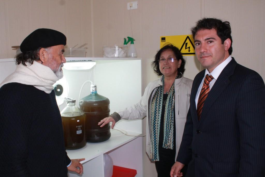 Proyecto FIC ayuda a repoblamiento de erizos a través del cultivo integrado