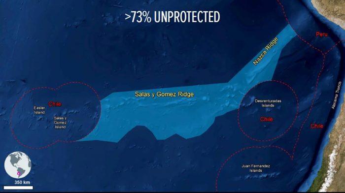 Investigador del Centro COSTA-R participa en propuesta para aumentar la protección de zona marina
