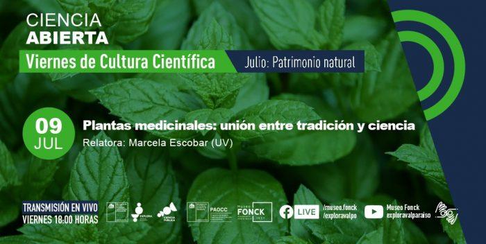 """""""En Chile contamos con alrededor de 5.500 especies vegetales de las que un 25% son endémicas"""""""